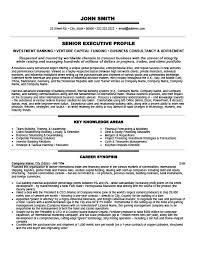 President Or Owner Resume Template Premium Resume Samples Example