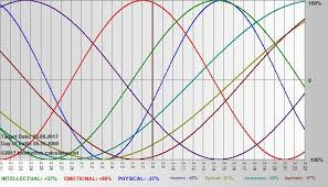 Biorhythm Calculator Net Me Compatibility Chart