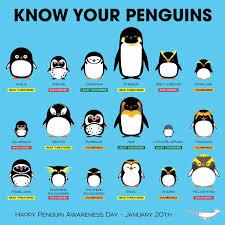 Penguins Chart Penguin Species Penguin Awareness Day