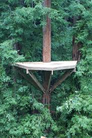 treehouse furniture ideas. Architecture Simple Bolt Method Base For Half Circle Tree House Design Ideas Cool Kids And Adults Treehouse Furniture