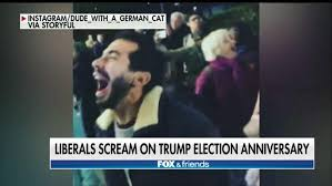Image result for democrats scream on election anniversary