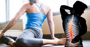 lower back pain relief tampa