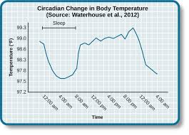 Human Temperature Chart What Is Consciousness General Psychology