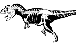 Small Picture T Rex Dinosaur Bones Coloring PagesRexPrintable Coloring Pages