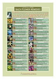 Bach Flower Remedies Chart Bach Flower Remedies Information Resource Chart