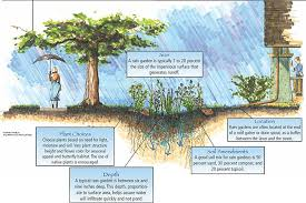 Small Picture The Conservation Foundation