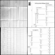 15 Generation Pedigree Chart Extra New 15 Generation Pedigree 10 Chart In A Package