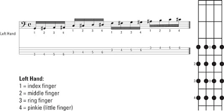Electric Guitar Finger Chart How To Practice Bass Guitar Finger Permutations Dummies