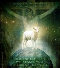Image result for PIctures of the passover lamb