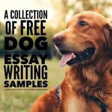 dog essay topics example papers for school kids  dog essay topics