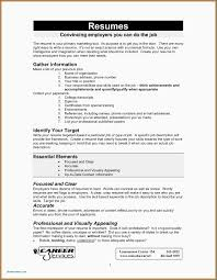 I Want To Make My Resumes How To Make My Resume Better Best Environmental Analysis Template