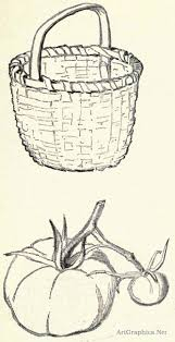 national drawing book