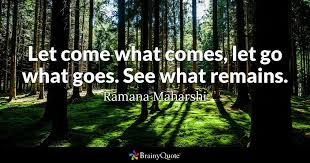 Letting Go Of The Past Quotes 29 Awesome Let Come What Comes Let Go What Goes See What Remains Ramana
