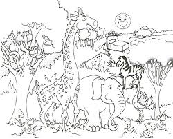 Small Picture zoo coloring pages for preschool tiger and rhesus macaques in a