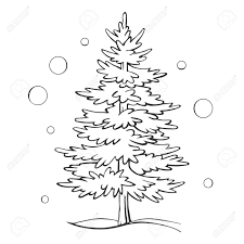 christmas tree drawing outline. Beautiful Christmas Christmas Tree Sketch Symbol Vector Xmas Winter Outline Drawing Isolated  On A White Background Intended Tree Drawing E