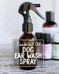 essential oil ear wash spray for dogs