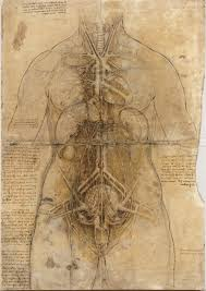 leonardo da vinci between art and science themes and essays  1 leonardo da vinci the cardiovascular system and principal organs of a w c 1509 10 black and red chalk ink yellow wash finely pricked