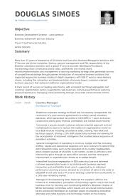 country manager resume samples product support manager resume