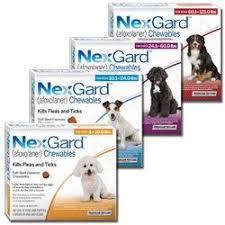 NexGard Chewables | ProductReview.com.au