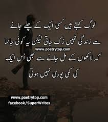 Quotes About Mother Love In Urdu Daily Motivational Quotes