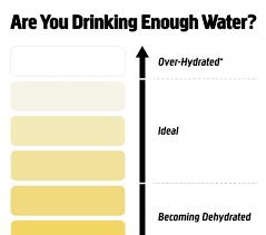 Printable Urine Output Chart 71 Abundant Urine Colour Charts