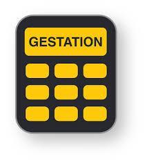 Cattle Gestation Chart Bovine Genetics I Gestation Calculator Embryo Transfer