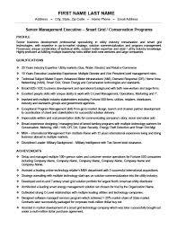 Vice President Or Senior Manager Resume Template Premium Resume