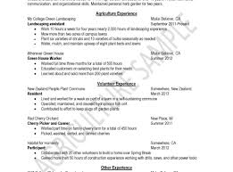 How To Write A Resume Sample Free Striking How To Prepare Resume Sample Making Good Tips On Writing 95