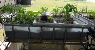 aquaponic gardening. complete guide to aquaponics aquaponic gardening g