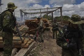 Resultado de imagen para imagenes de destruccion del amazonas