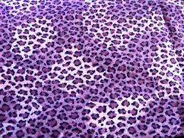 Leopard Print Bedroom Wallpaper 17 Best Images About Cheetah Print On Pinterest Wallpaper