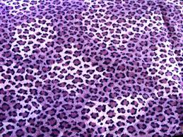 Leopard Print Wallpaper Bedroom 17 Best Images About Cheetah Print On Pinterest Wallpaper