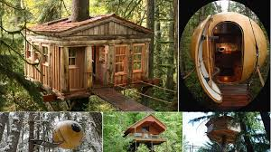 treehouse furniture ideas. Amazing-treehouse-hotels Treehouse Furniture Ideas
