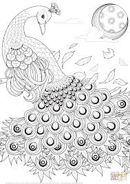 Graceful Peacock coloring page | Free Printable Coloring Pages