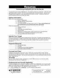 What Information Should Be Included On A Resume Free Downloads What