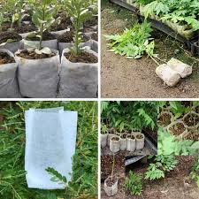<b>100Pcs</b> /<b>Set</b> Nursery Pots Seedling Raising Bags Environmental ...