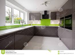Green And Gray Interior Design Modern Green And Grey Kitchen Stock Photo Image Of