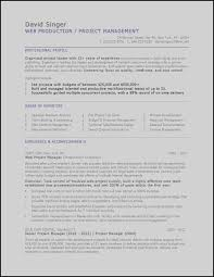 Unique Resume Sample Marketing Project Manager Resume Templates ...