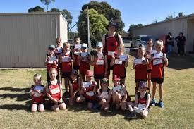 Kyabram little athletics report