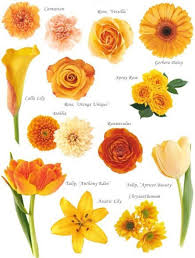 types of flowers in bouquets. flowers by colour types of in bouquets y