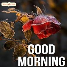 good morning nature images hd free