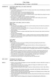 Actuarial Resume Samples Velvet Jobs