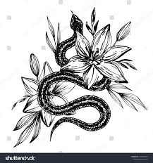 Hand Drawn Ink Snake Lilies Flowers Stock Vector Royalty Free