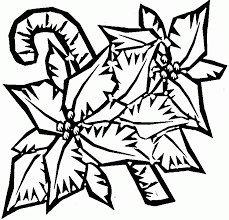 100% free flowers coloring pages. Poinsettia Picture Coloring Home