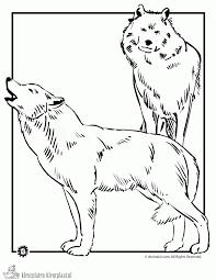 Kleurplaten Wolf Kleurplaten Kleurplaatnl