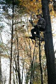 tree ladder ladder tree stands tree ladder diy