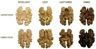 Usda Walnut Color Chart Colour And In Vitro Quality Attributes Of Walnuts From