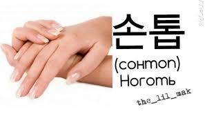 корейский в картинках части тела