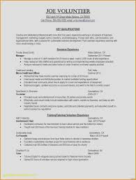 Military Resume Template Inspirational Military Resume Examples