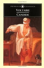 candide essays gradesaver candide study guide